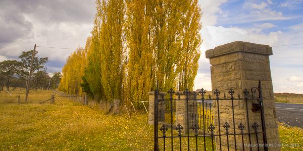 Autumn in Bathurst