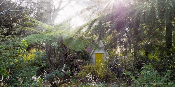 A Hobbits Dwelling